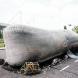 https://www.basingstokefestival.co.uk/wp-content/uploads/2018/05/SetRatioSize725459-Circo-Rum-Ba-Ba-The-Whale-2-e1526890026881-160x160.jpg