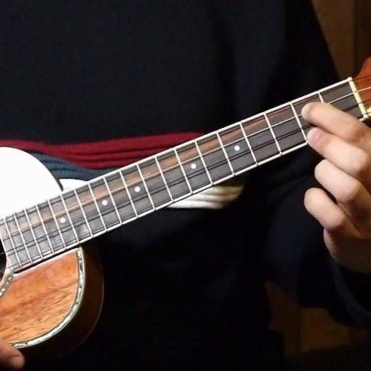 https://www.basingstokefestival.co.uk/wp-content/uploads/2018/05/ukulele-540x540.jpg