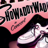 https://www.basingstokefestival.co.uk/wp-content/uploads/2019/05/showaddywaddy-160x160.png